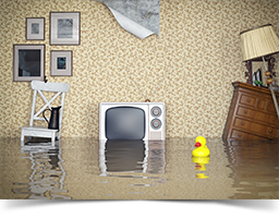 A flooded living room.